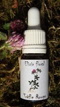 """JS - Elixir floral """"trèfle rouge"""" 10ml"""
