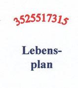 N04 Lebensplan