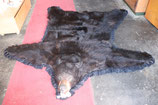 Bärenvorleger Bärenfell Schwarzbärfell Bär