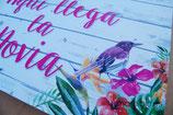 Hawai - Novia