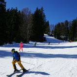 3-Stunden-Skikurs Fortgeschritten (B1 - B3)