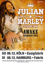 Julian Marley Tourposter 2009