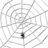 Spinnenweb Koord Wit
