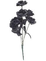 Zwarte rozen horror