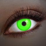 UV Lenzen Groen