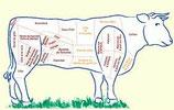 **-Colis boeuf barbecue Bio 10kg