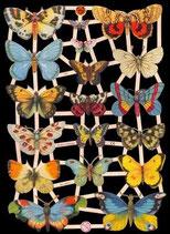 Glanzbilderbogen Schmetterlinge
