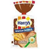 American sandwich complet Harry's 600 gr