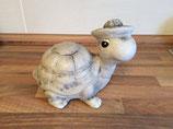 Schildkröte mit Hut