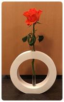 Kreis Vase mit Reagenzglas