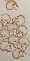 Matoir n°103 crâne profil
