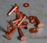 Rivets à mater en cuivre 20 mm / T35