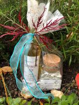 Bio-Sonnenblumen-Öl (scharf oder mit Rosmarin) und Gewürzsalz