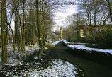 Winter : Kasteel van Pellenberg (p19)