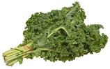 Bio-Grünkohl, verschiedene Sorten, Stk.