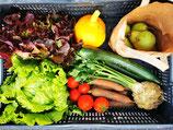 Gemüse der Saison