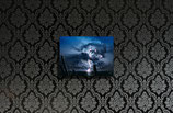 Cumulus Arboreus small size print 35x50cm