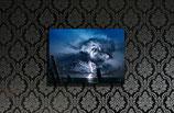 Cumulus Arboreus medium size print 50x70cm