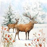 88 Serv. Deer in Snow