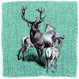 60 Serv. Deer Family