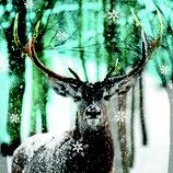 Serv. Deer im Wald