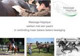 Module 09.01 Masseren van Paarden met aandoeningen