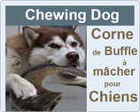 Chewing-dog