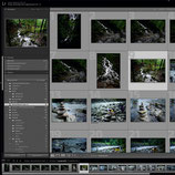 Workshop: Lightroom Basics 09.11.2019