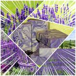 "Alpaka Keratin Seife ""Lavendelgarten"" hergestellt von laRiSavon"
