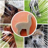 Alpakakeratin Formseife in verschiedenen Düften