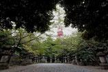 DVD:「芝地域と増上寺」:小澤弘先生による増上寺散策ツアー研修