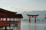 全5日コース:中京・関西研修(2014年1月31日~2月4日)