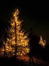 LED Lichterkette Tannenbaum