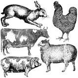 IOD Decor Stempel Farm Animals
