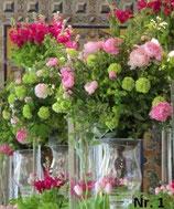 Pokal- und  Vasenfüllung - eine elegante und außergewöhnliche Dekorationsvariante