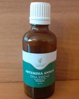 Artemisia annua – DNA-Essenz