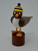 Möwe mit schwarz-gelber Ringelmütze