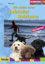 Wir wollen einen Labrador-Retriever