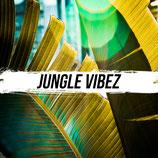 JungleVibez Presets