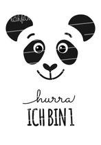 Geburtstagsshirt | Panda