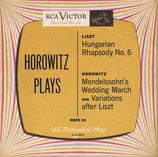 商品名WEPR 10  Horowitz  45