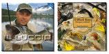 Superpromozione: i due libri di Paolo Pacchiarini + DVD ad un prezzo davvero speciale, se acquistati assieme