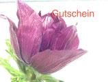 Gutschein/Voucher