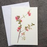 """Kunstdruckkarte """"Zweig"""""""