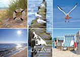 Postkarte UK 016