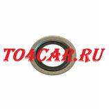 Оригинальная прокладка сливной пробки Рено Дастер 1.6 102 лс с кондиционером 2011-2015 (RENAULT DUSTER 1.6) 110265505R