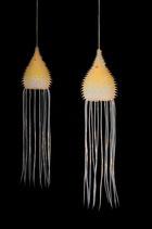 Thuricolaria pumila