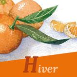 Magnet 4 saisons Fruits & légumes Hiver