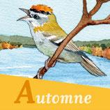 Magnet 4 saisons Oiseaux Automne