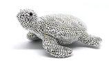 Glitzerschildkröte